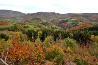 automne-cantal