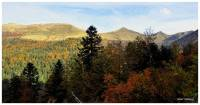 automne-puy-mary
