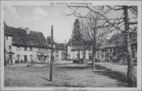 calvinet5_cpa