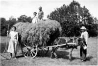 famille-VIZET-1957-pendant-les-fenaisons-chassagne