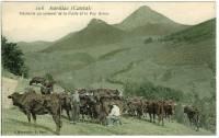 cantal-traite
