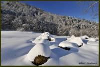hiver-Falgoux