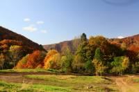 automne_vallee_mandailles3