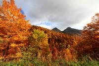 automne_vallee_mandailles4
