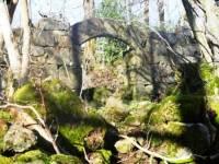 Salilhe_ruines